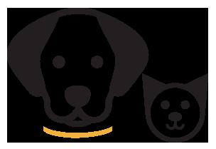 Pet-sitting da linha